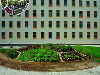 © VG Bild-Kunst Bonn 2020, Foto: Stefan Lachmann